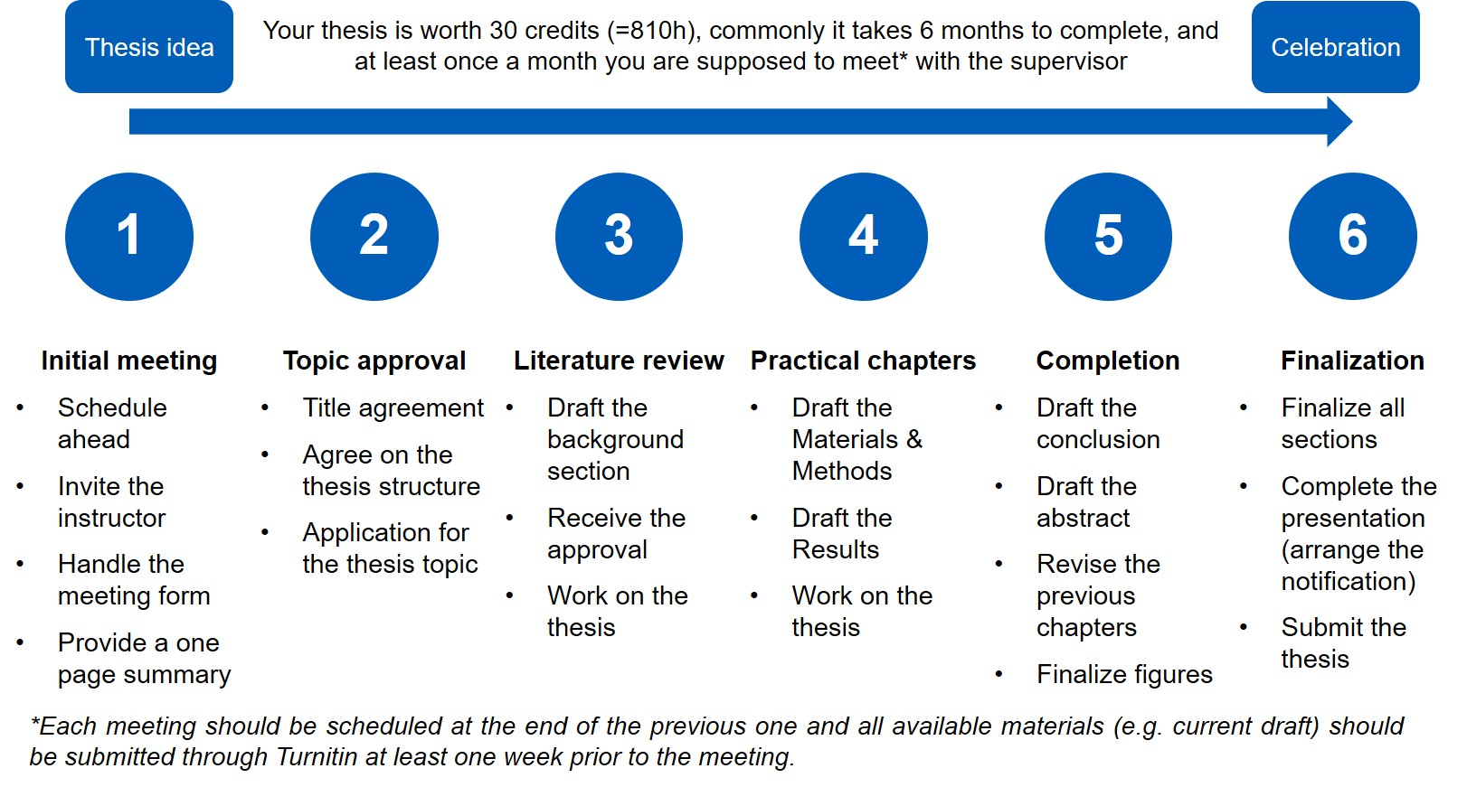 MSc thesis timeline