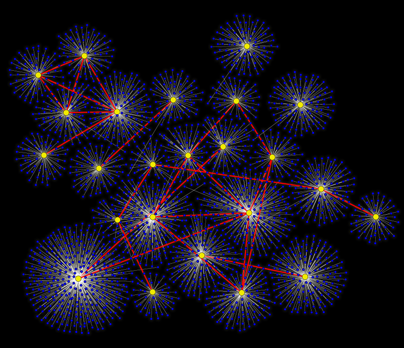A network. A very fancy network.