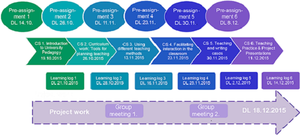 Timeline and functions of the course